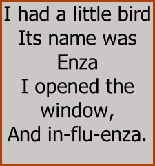 I had a little bird  Its name was Enza  I opened the window,  And in-flu-enza.